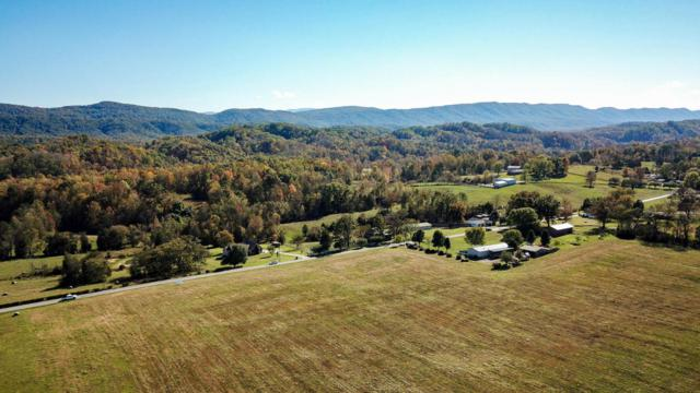 Lot 7 Chilhowee View Rd, Maryville, TN 37803 (#1021080) :: Billy Houston Group
