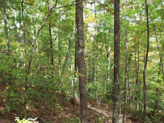 Lot 10 Grey Fox Run, Sevierville, TN 37862 (#1021126) :: Billy Houston Group