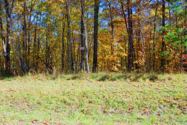 Wildcat Rd. & Cougar Ln., Jamestown, TN 38556 (#1021383) :: Shannon Foster Boline Group