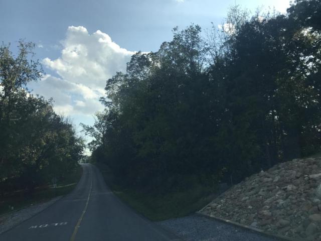 101 Cayuga Drive, Loudon, TN 37774 (#1021433) :: Shannon Foster Boline Group