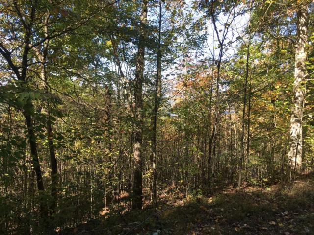 Lot 62 Overlook Trail, Maynardville, TN 37807 (#1021450) :: Billy Houston Group