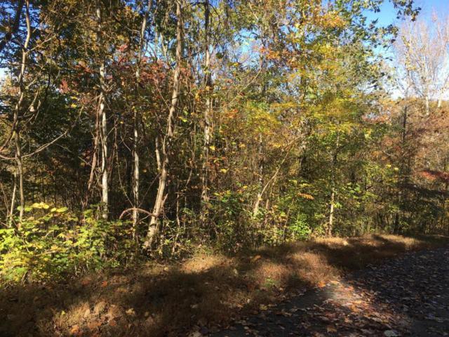 Lot 63 Overlook Trail, Maynardville, TN 37807 (#1021452) :: Billy Houston Group