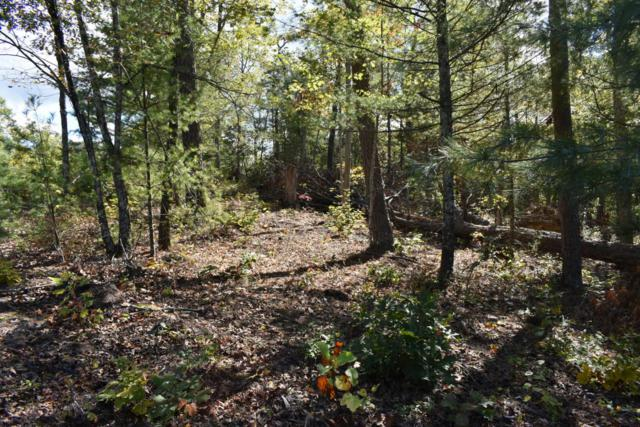 514 Percussion Court, Walland, TN 37886 (#1021495) :: Billy Houston Group