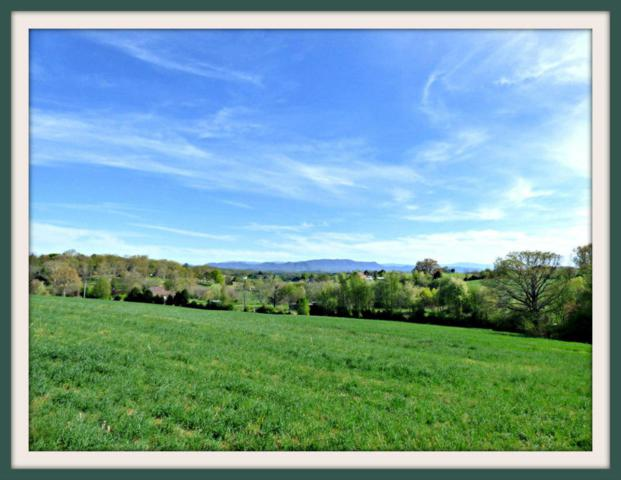 Lot 2 Falcon Rd, White Pine, TN 37890 (#1021537) :: Billy Houston Group
