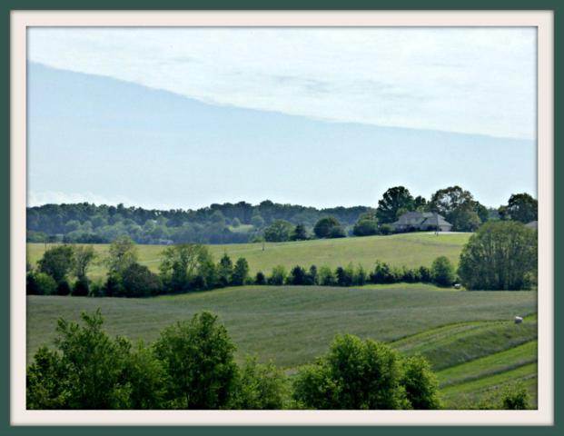 Lot 3 Falcon Rd, White Pine, TN 37890 (#1021543) :: Billy Houston Group