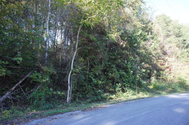 Lot 18 Baker Circle, Maynardville, TN 37807 (#1021596) :: The Cook Team