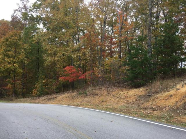 Water Color Drive, Sparta, TN 38583 (#1021664) :: Billy Houston Group