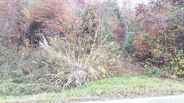 Lot 12 Culvahouse Circle, Ten Mile, TN 37880 (#1022088) :: Billy Houston Group