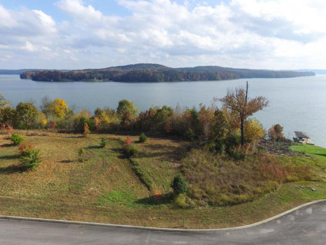 Lot 6 Docks Of The Bay Drive, Harriman, TN 37748 (#1022108) :: Billy Houston Group