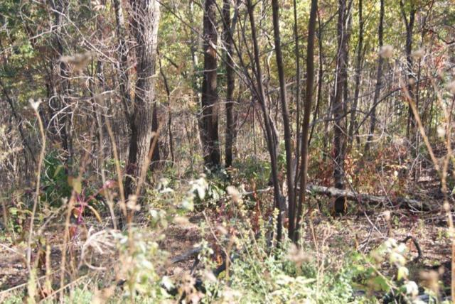 Lot#18 Lonesome Pine Way, Sevierville, TN 37862 (#1022643) :: Billy Houston Group