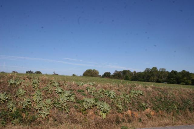 107 Fagin Lane, Madisonville, TN 37354 (#1022673) :: Billy Houston Group