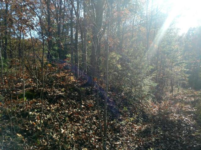 Lots 33&34 Mountain Trail Way, Sevierville, TN 37876 (#1022829) :: Billy Houston Group