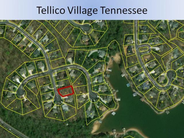 123 Seminole Lane, Loudon, TN 37774 (#1022889) :: Billy Houston Group