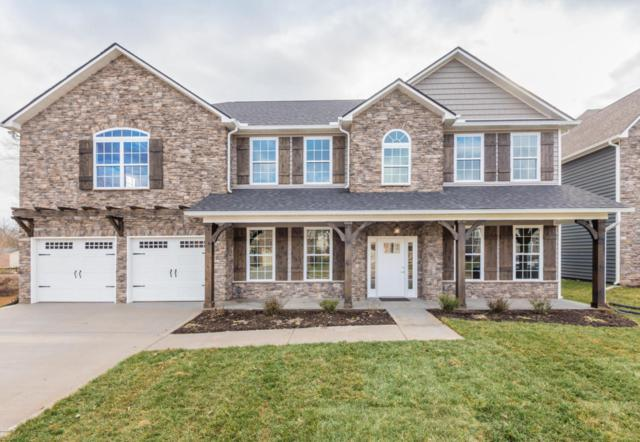 Gladiator Lane, Lot 6, Knoxville, TN 37922 (#1023039) :: Billy Houston Group