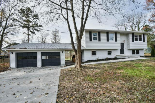 1023 Hampson Lane, Knoxville, TN 37919 (#1023050) :: Billy Houston Group
