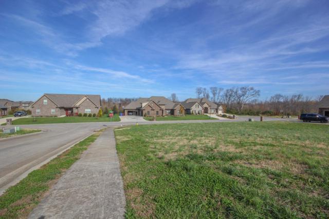 Breckland Lane, Alcoa, TN 37701 (#1023087) :: Shannon Foster Boline Group