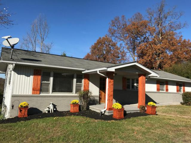 10183 Bob Gray Rd, Knoxville, TN 37923 (#1023103) :: Billy Houston Group