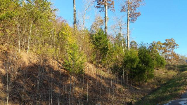 Lot 799 Russell Brothers Rd, Sharps Chapel, TN 37866 (#1023241) :: Realty Executives Associates