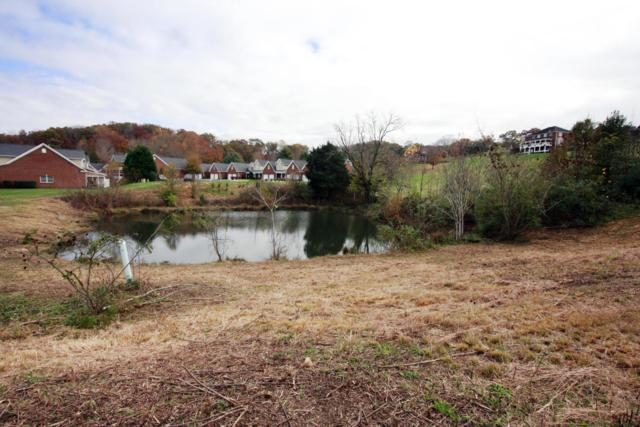 2300 Pauly Brook Way, Knoxville, TN 37932 (#1023270) :: Shannon Foster Boline Group