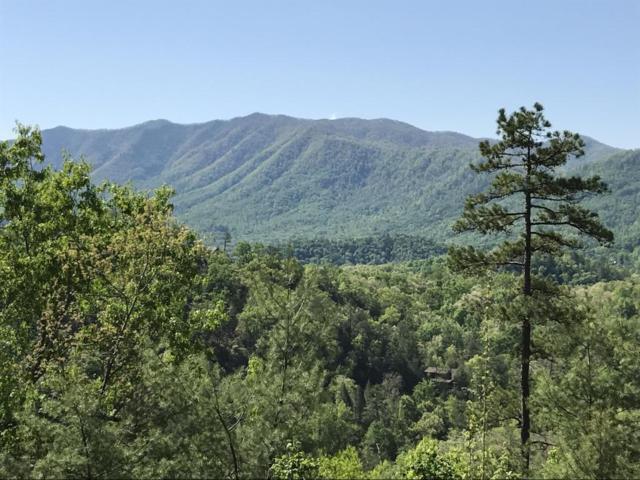 424 Mt John Loop Rd, Townsend, TN 37882 (#1023409) :: Shannon Foster Boline Group