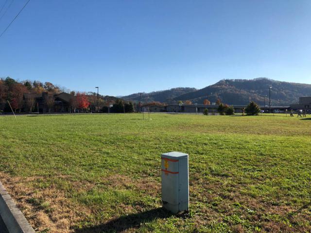 Lot 6 Sand Pike Blvd, Pigeon Forge, TN 37863 (#1023469) :: The Terrell Team