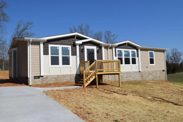 176 Rolling Hills Rd, Church Hill, TN 37642 (#1023624) :: Billy Houston Group