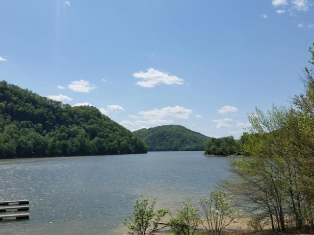 Lot 1 Walnut Bend Drive, Whitesburg, TN 37891 (#1023905) :: Shannon Foster Boline Group