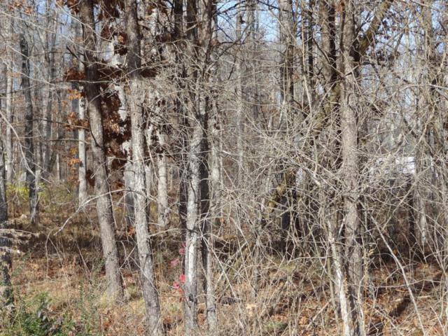 Tulip Drive, Crossville, TN 38555 (#1024319) :: CENTURY 21 Legacy