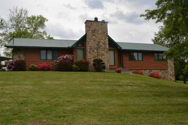 264 Cherokee Tr, Seymour, TN 37865 (#1024371) :: Shannon Foster Boline Group