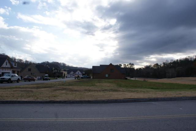 170 Augusta Lane, Lenoir City, TN 37772 (#1024528) :: Billy Houston Group