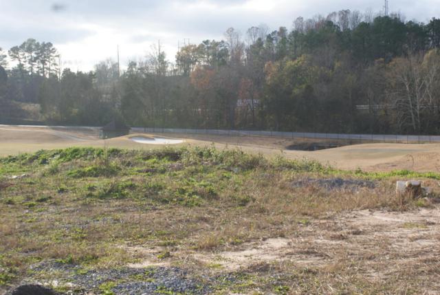 320 Augusta Lane, Lenoir City, TN 37772 (#1024532) :: Billy Houston Group