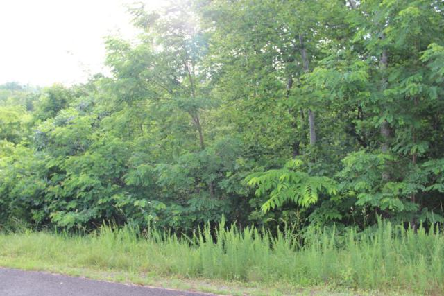 Lot #389 Graphite Court, New Tazewell, TN 37825 (#1024562) :: Billy Houston Group