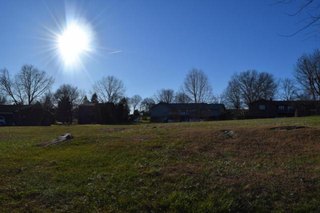 Ledwell Drive, Seymour, TN 37865 (#1024599) :: SMOKY's Real Estate LLC