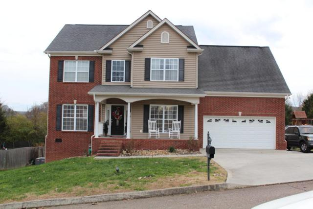 7425 Openview Lane, Corryton, TN 37721 (#1024670) :: Shannon Foster Boline Group
