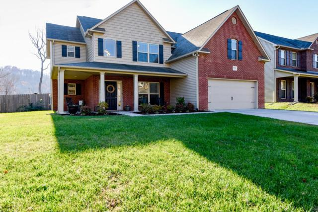 1616 Dempsey Rd, Knoxville, TN 37932 (#1024713) :: Billy Houston Group