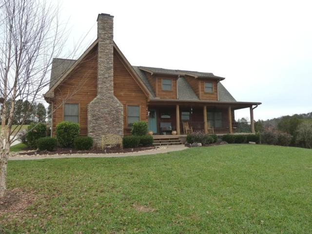8147 Majestic View Way, Corryton, TN 37721 (#1024715) :: Shannon Foster Boline Group