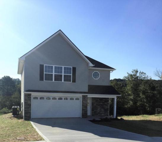 561 Evelyn Drive, Loudon, TN 37774 (#1024734) :: Billy Houston Group