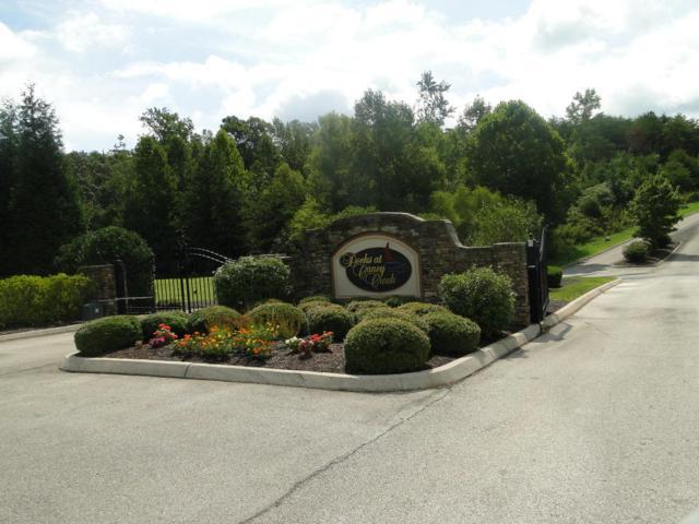 Lot 43 Serenity Drive, Harriman, TN 37748 (#1024795) :: Shannon Foster Boline Group