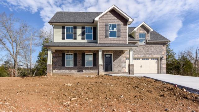 7730 Lake Mountain Lane, Knoxville, TN 37938 (#1024799) :: Billy Houston Group