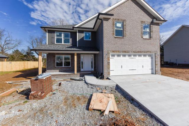 7802 Lake Mountain Lane, Knoxville, TN 37938 (#1024800) :: Billy Houston Group