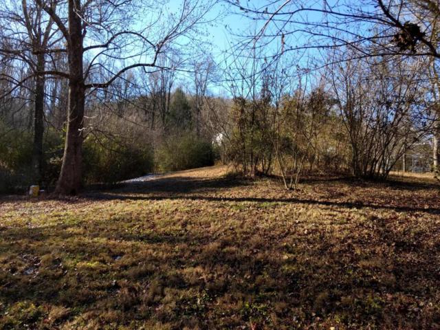 Mccarter Rd, Townsend, TN 37882 (#1024879) :: SMOKY's Real Estate LLC