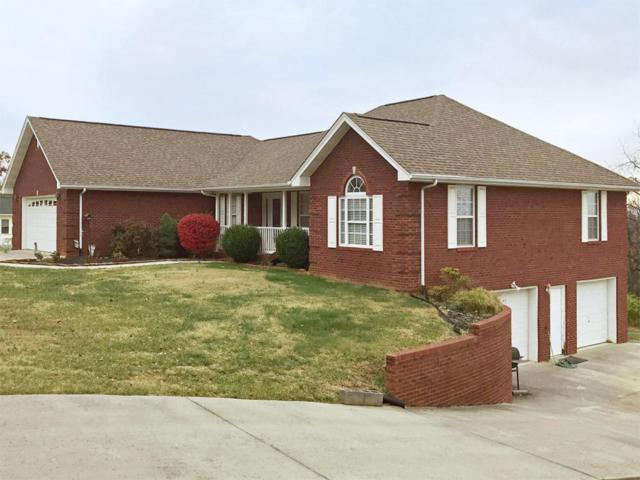 144 Skyline Drive, Dandridge, TN 37725 (#1024892) :: Billy Houston Group