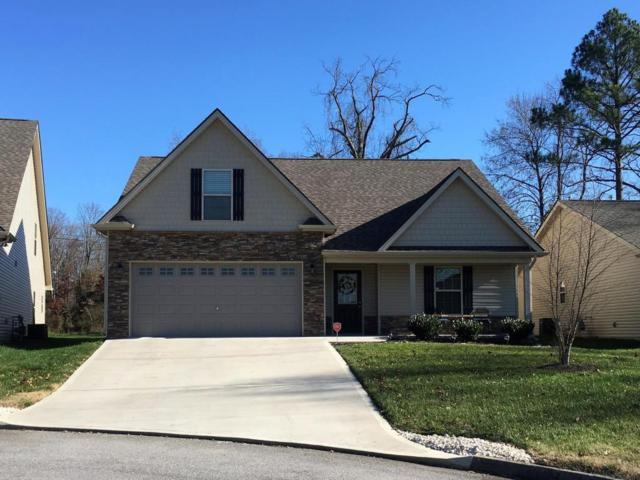 701 Klondike Way, Knoxville, TN 37923 (#1024917) :: Billy Houston Group