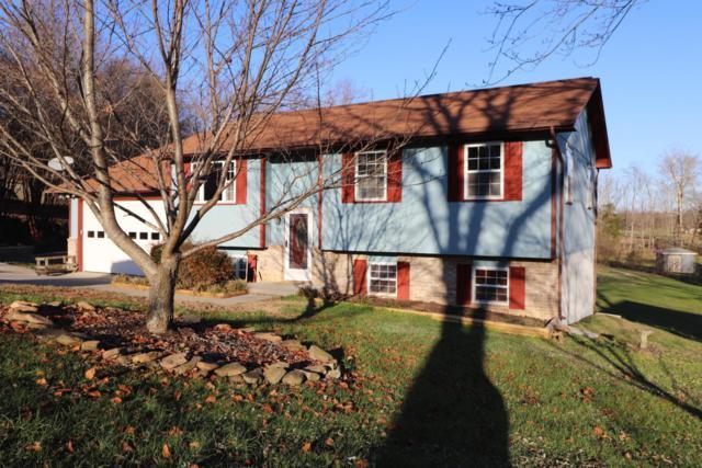110 Tansi Lane, Oak Ridge, TN 37830 (#1024942) :: Shannon Foster Boline Group