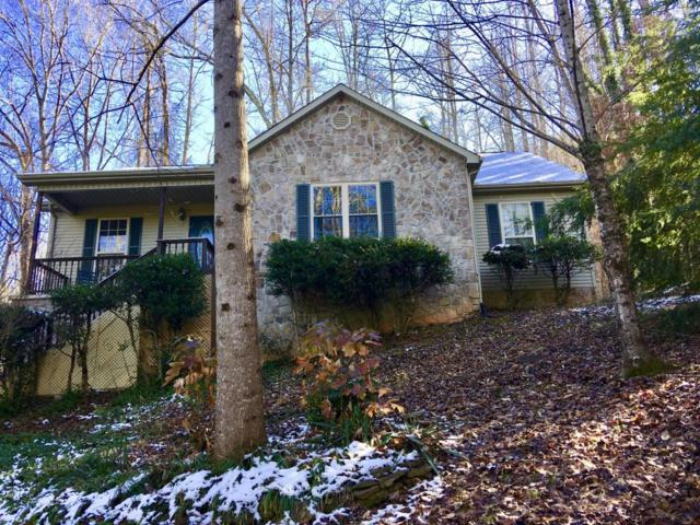 307 Domar Drive, Townsend, TN 37882 (#1024950) :: SMOKY's Real Estate LLC