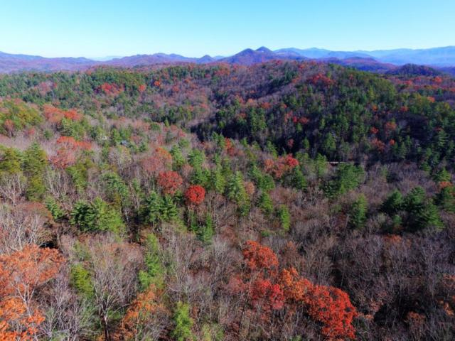 Overlook View Rd, Walland, TN 37886 (#1024955) :: Billy Houston Group