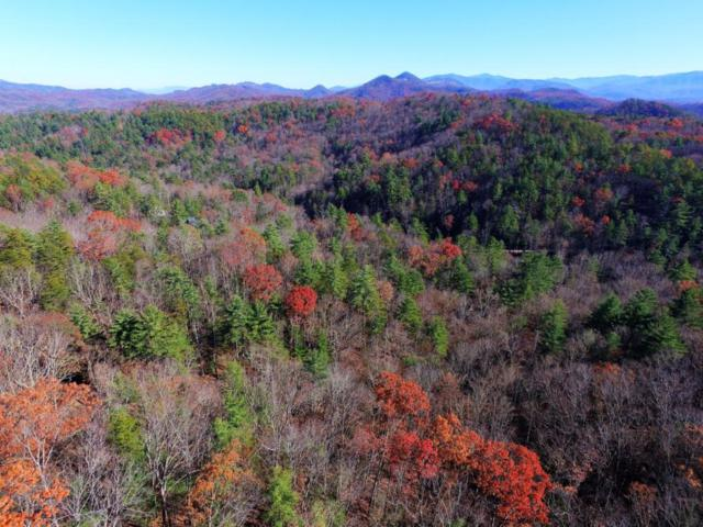 Overlook View Rd, Walland, TN 37886 (#1024962) :: Billy Houston Group