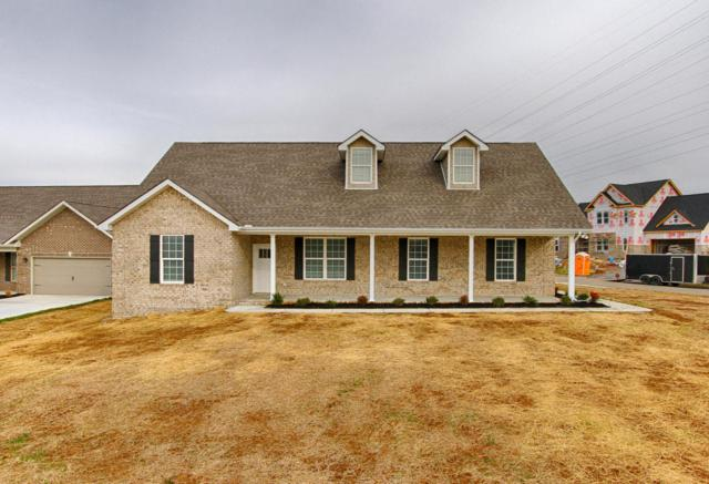 6303 Knightsboro Rd, Knoxville, TN 37912 (#1024967) :: Shannon Foster Boline Group