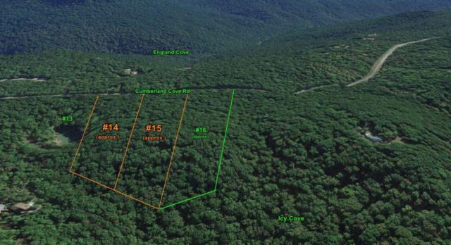 Lot 15 Cumberland Cove Rd, Monterey, TN 38574 (#1025005) :: Shannon Foster Boline Group