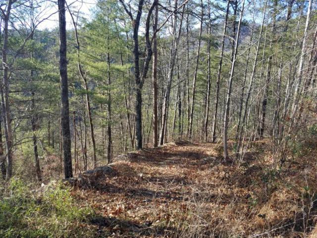 651 Hawk View Drive, Townsend, TN 37882 (#1025111) :: SMOKY's Real Estate LLC